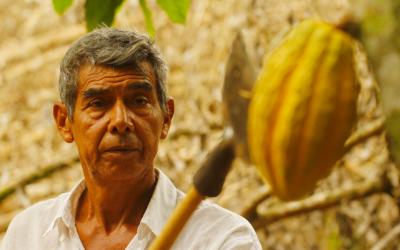 Antenor Alberto Aviles: «En Triana Cacaonos comprometemos a contribuir al cambio del sector del chocolate»