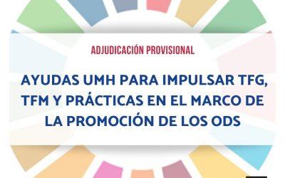 Adjudicación provisional ayudas TFG, TFM Y Prácticas sobre ODS
